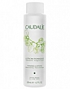 Caudalie Lotion Tonique 100ml